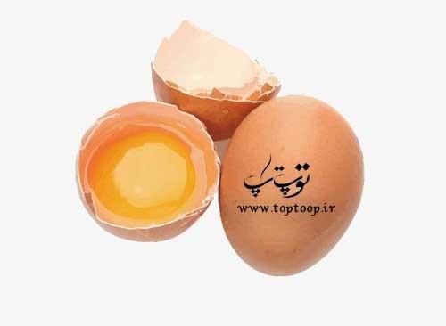 تعبیر خواب تخم مرغ فاسد