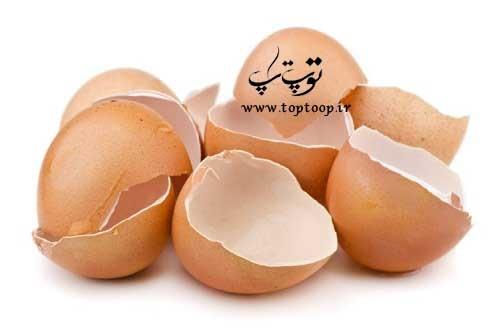 تعبیر خواب پوست تخم مرغ شکسته شده