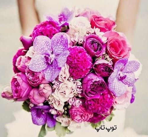 عکس پروفایل گل عاشقی + گالری عکس