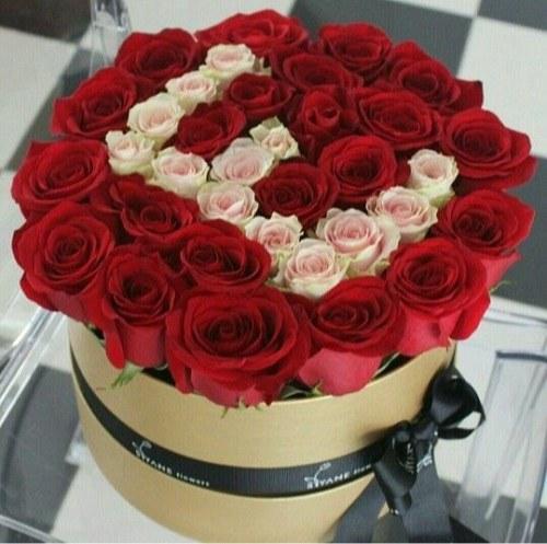 عکس تزیین شده گل زیبا با حرف انگلیسی E