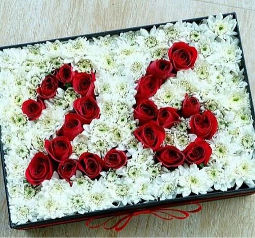 عکس پروفایل گل عدد 26 مخصوص تولد