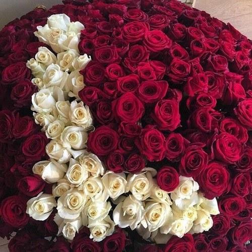عکس گل حروف L