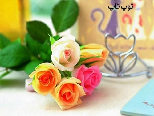 عکس گلهای خوشگل برای پروفایل تلگرام