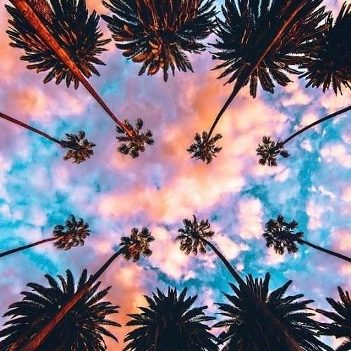 عکس های زیبا و رویایی از طبیعت بکر در سال 2019