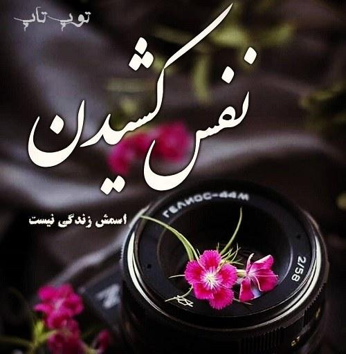 عکس تیکه دار برای پروفایل + البوم عکس نوشته