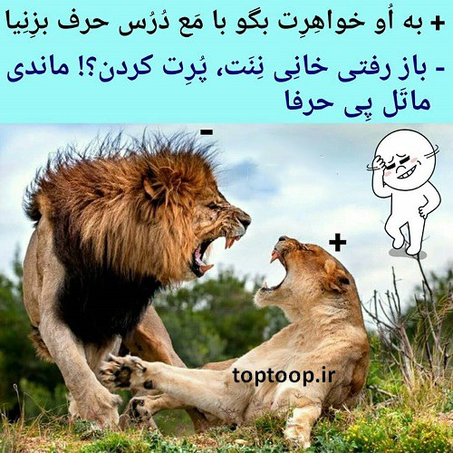 عکس نوشته خواهر شوهر بدجنس + طنز نوشته