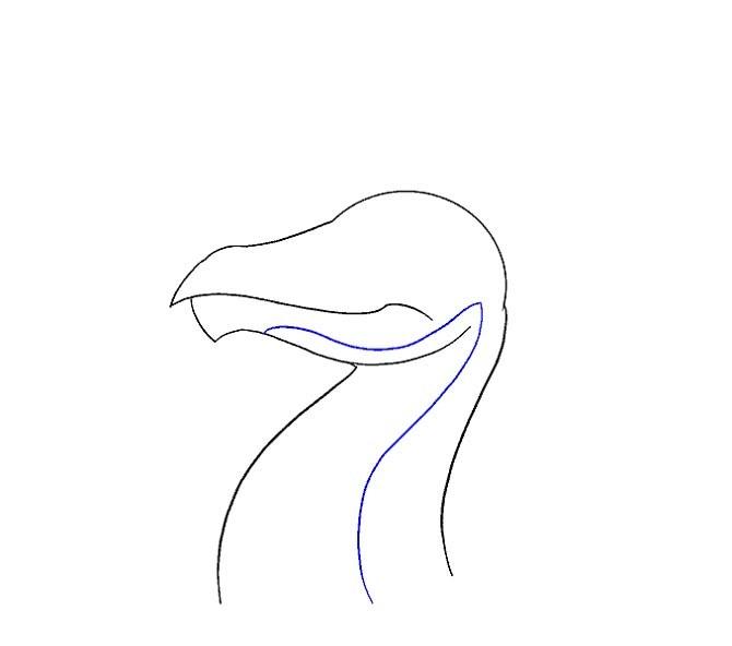 نقاشی سر اژدها برای کودک مرحله دهم
