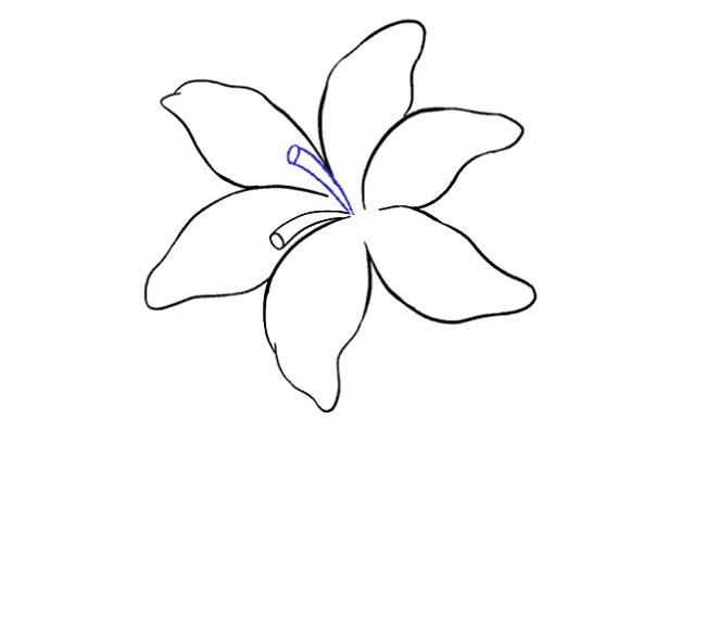 نقاشی گل سوسن برای بچه ها مرحله دهم