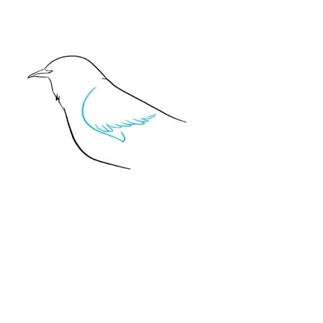 آموزش نقاشی مرغ مینا مرحله سوم