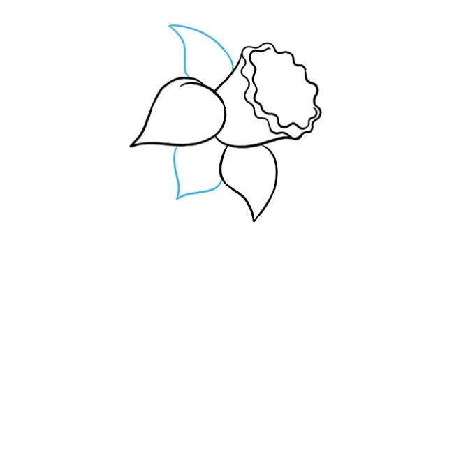 نقاشی کودکانه گل نرگس مرحله چهارم