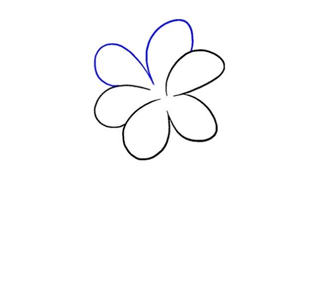 نقاشی کودکانه گل نرگس مرحله پنجم