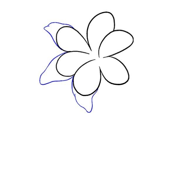 نقاشی کودکانه گل سوسن مرحله ششم
