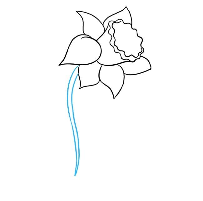 نقاشی گل نرگس برای کودکان مرحله ششم