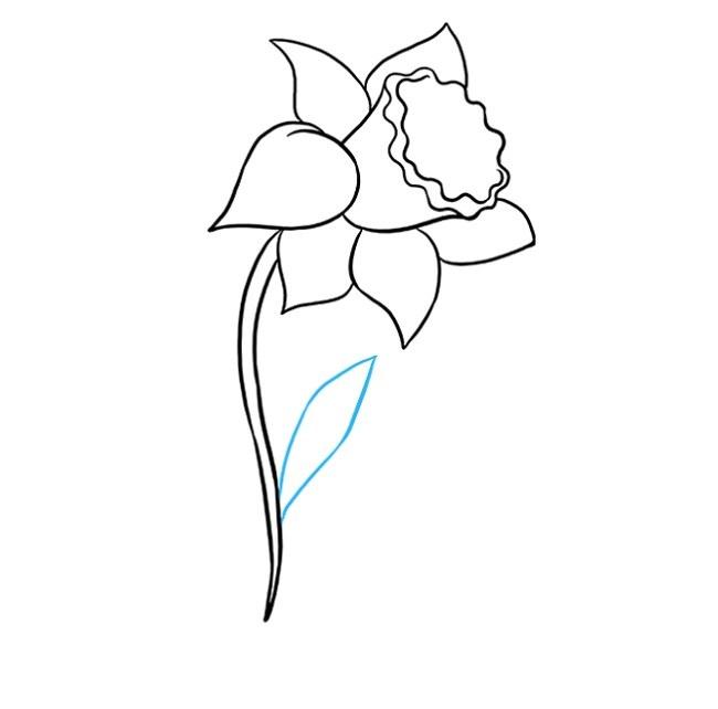 آموزش نقاشی گل نرگس مرحله هفتم