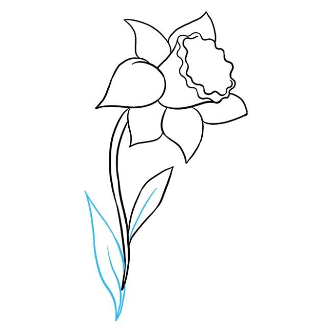 نقاشی اسان گل نرگس مرحله هشتم