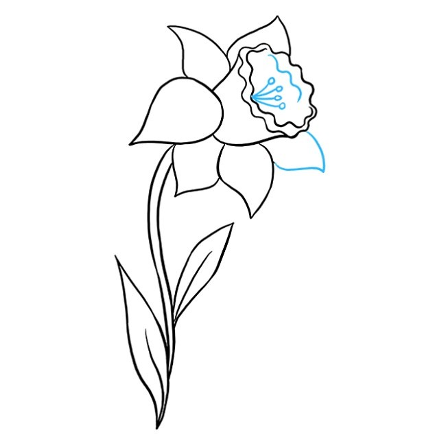 قدم به قدم نقاشی گل نرگس مرحله نهم