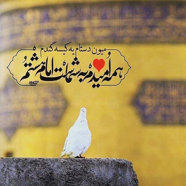 عکس دلتنگی برای حرم امام رضا