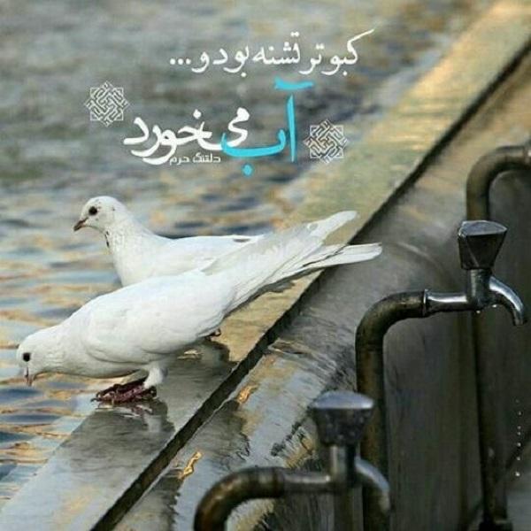 عکس نوشته دلتنگی برای حرم امام رضا