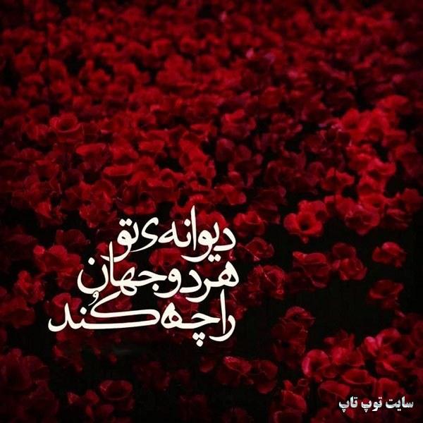 عکس نوشته دیوانه ی امام زمان بودن