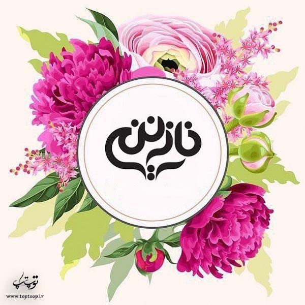 طراحی لوگوی جدید از اسم نازنین