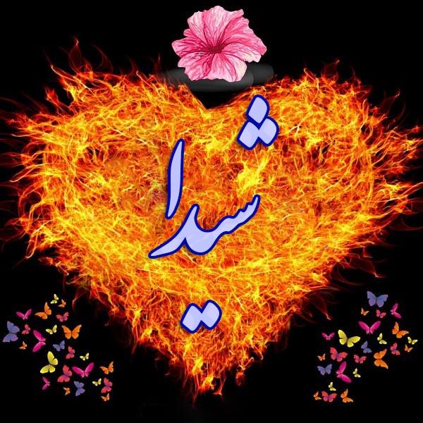 عکس پروفایل اسم شیدا داخل قلب