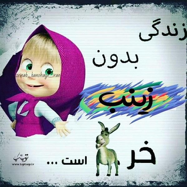 عکس نوشته زندگی بدون زینب خر است