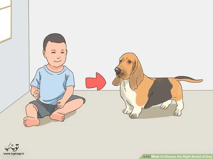 در نظر گرفتن بچه ها یا سایر سگ ها در منزل