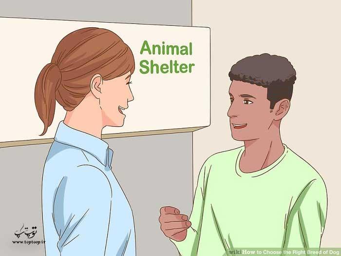 انتخاب نژاد سگ
