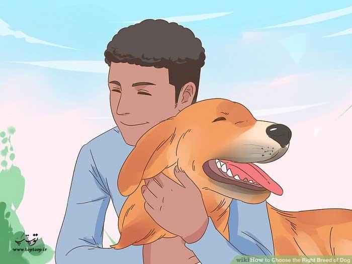 وقت گذراندن با سگ قبل از سرپرستی