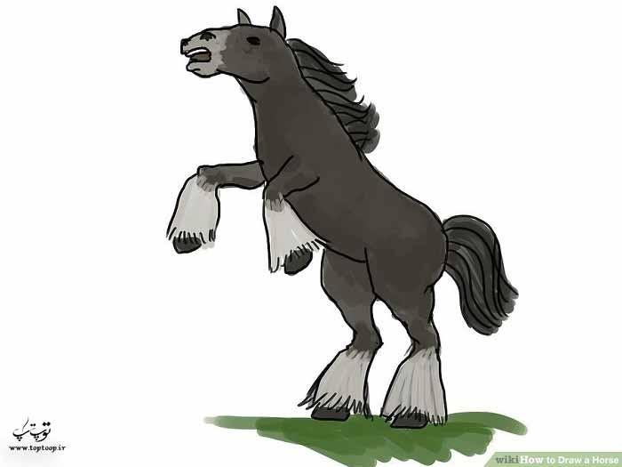 چگونگی نقاشی یک اسب روی دوپا