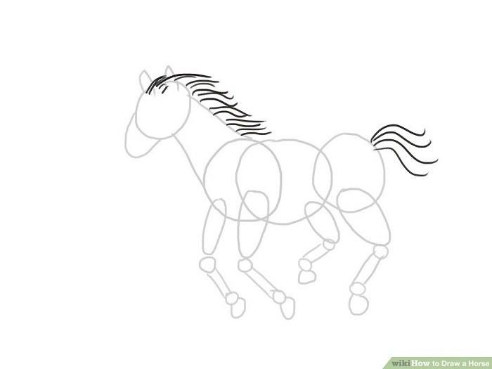 طراحی اسب