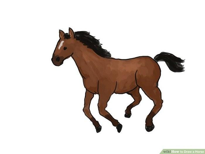 آموزش جامع نقاشی اسب در حالت دویدن