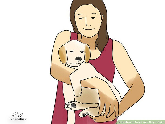 بلند کردن سگ