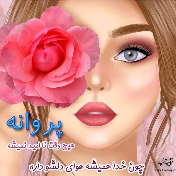 عکس نوشته کارتونی اسم پروانه