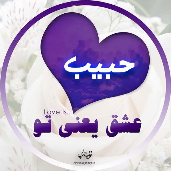 عکس پروفایل اسم حبیب