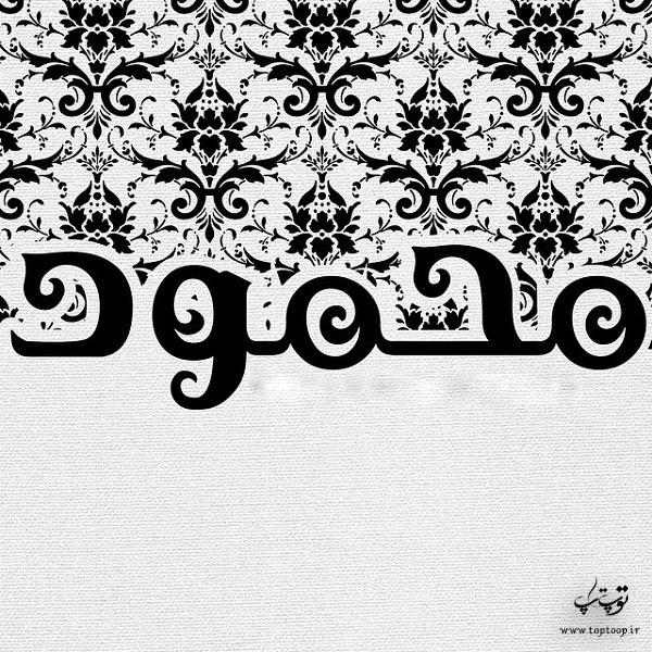 لوگوی اسم محمود