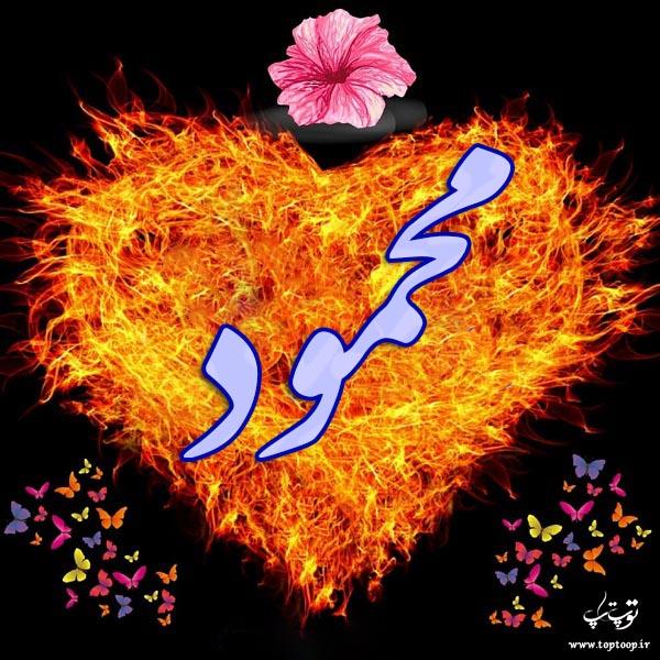 طرح قلب اسم محمود