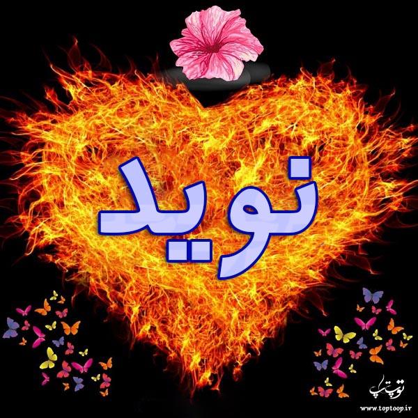 عکس نوشته با اسم نوید