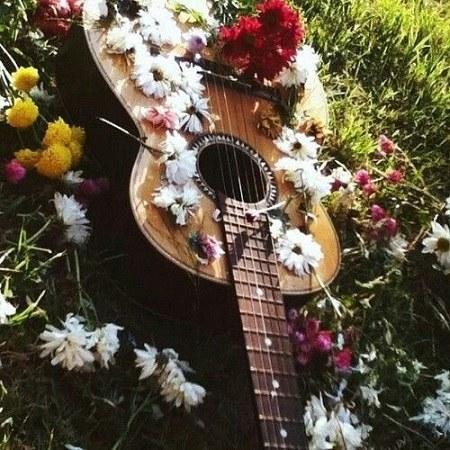 گالری عکس گیتار