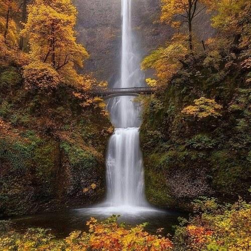 تصویر طبیعت برای پروفایل ، عکس زیبای طبیعت برای پروفایل
