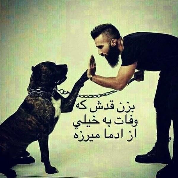 عکس نوشته وفاداری سگ برای پروفایل