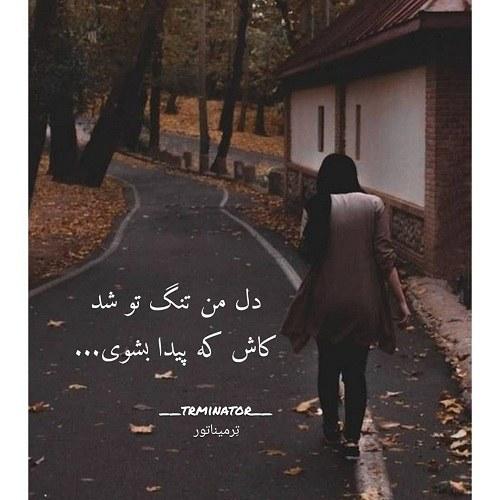 عکس نوشته دخترانه دلم برایت تنگ شده