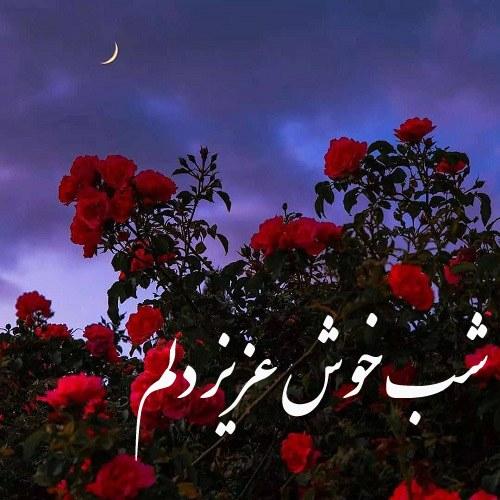 عکس نوشته شب خوش عزیز دلم