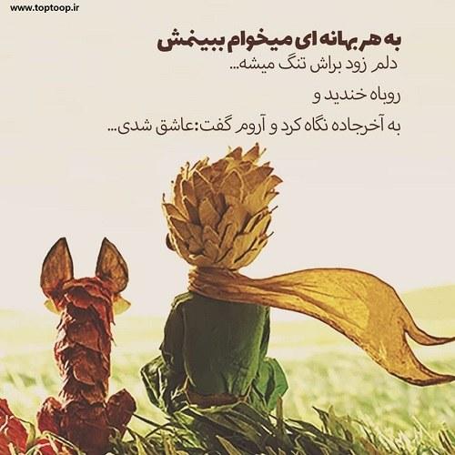 عکس نوشته های شاهزاده کوچولو و روباه