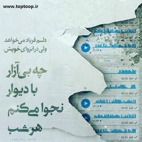 عکس نوشته فریاد سکوت