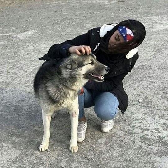 عکس پروفایل دخترونه که داره دست روی سر سگش میکشه