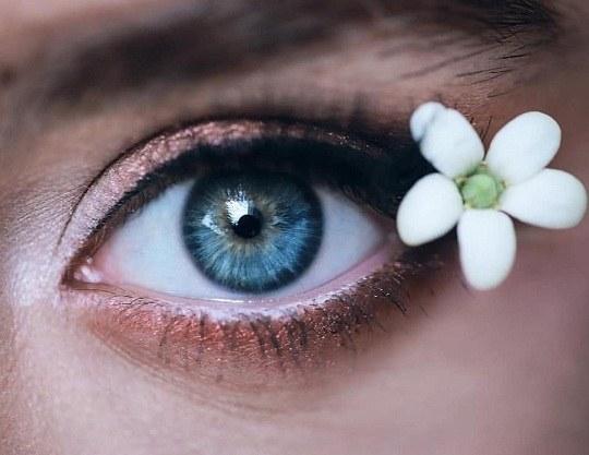 عکس گل با چشم برای پروفایل