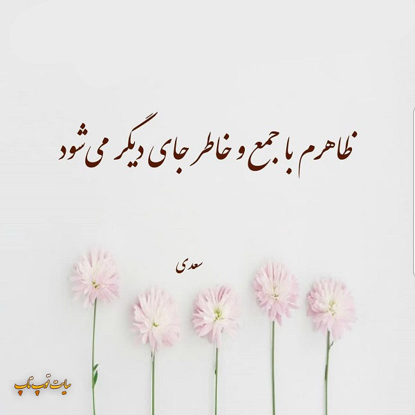 عکس نوشته تک بیت