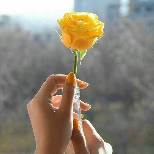 عکس دخترونه گل زرد