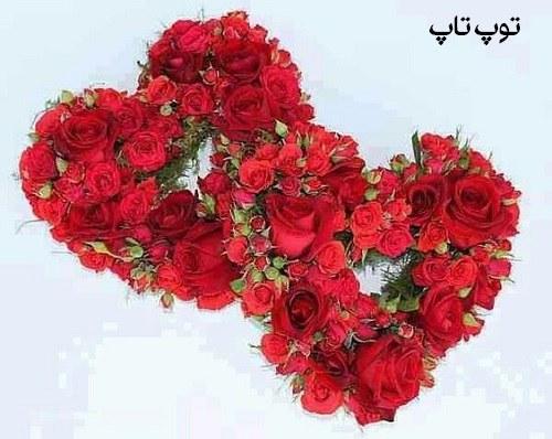 عکس پروفایل گل به شکل دو قلب قرمز